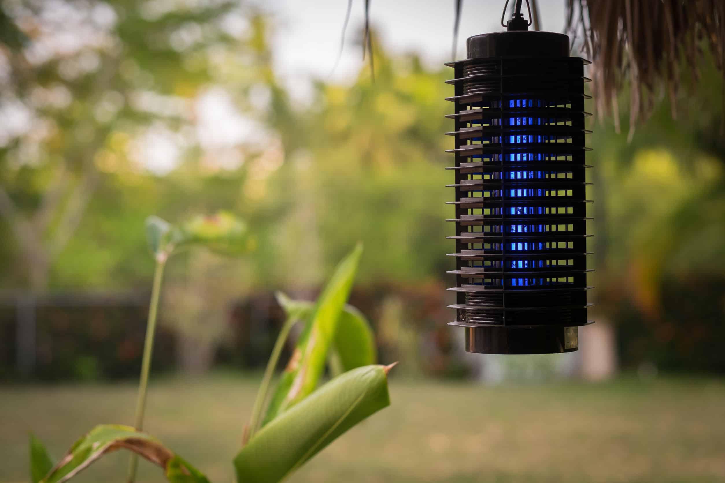 Trampa para mosquitos: ¿Cuál es la mejor del 2020?