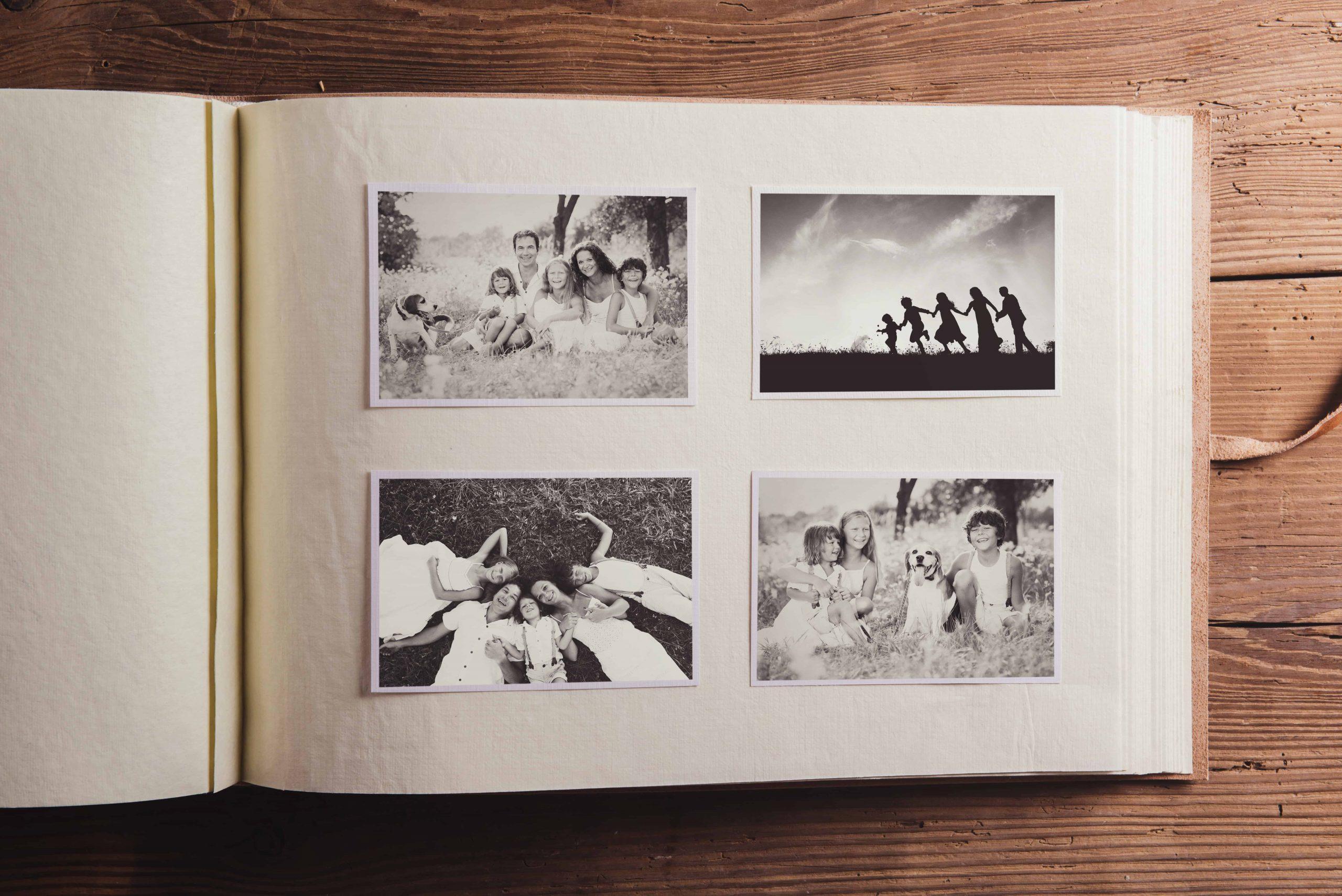 Álbum de fotos: ¿Cuáles son los mejores del 2020?