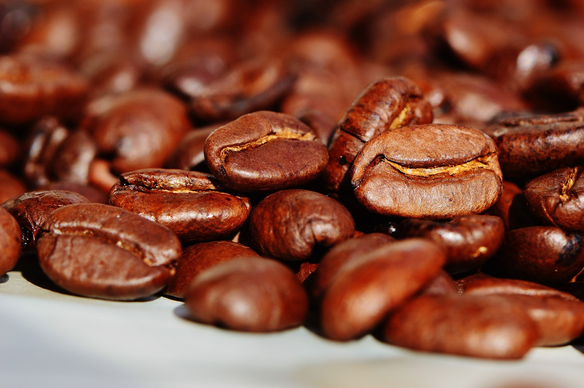 Café Veracruzano: ¿Cuál es el mejor del 2020?