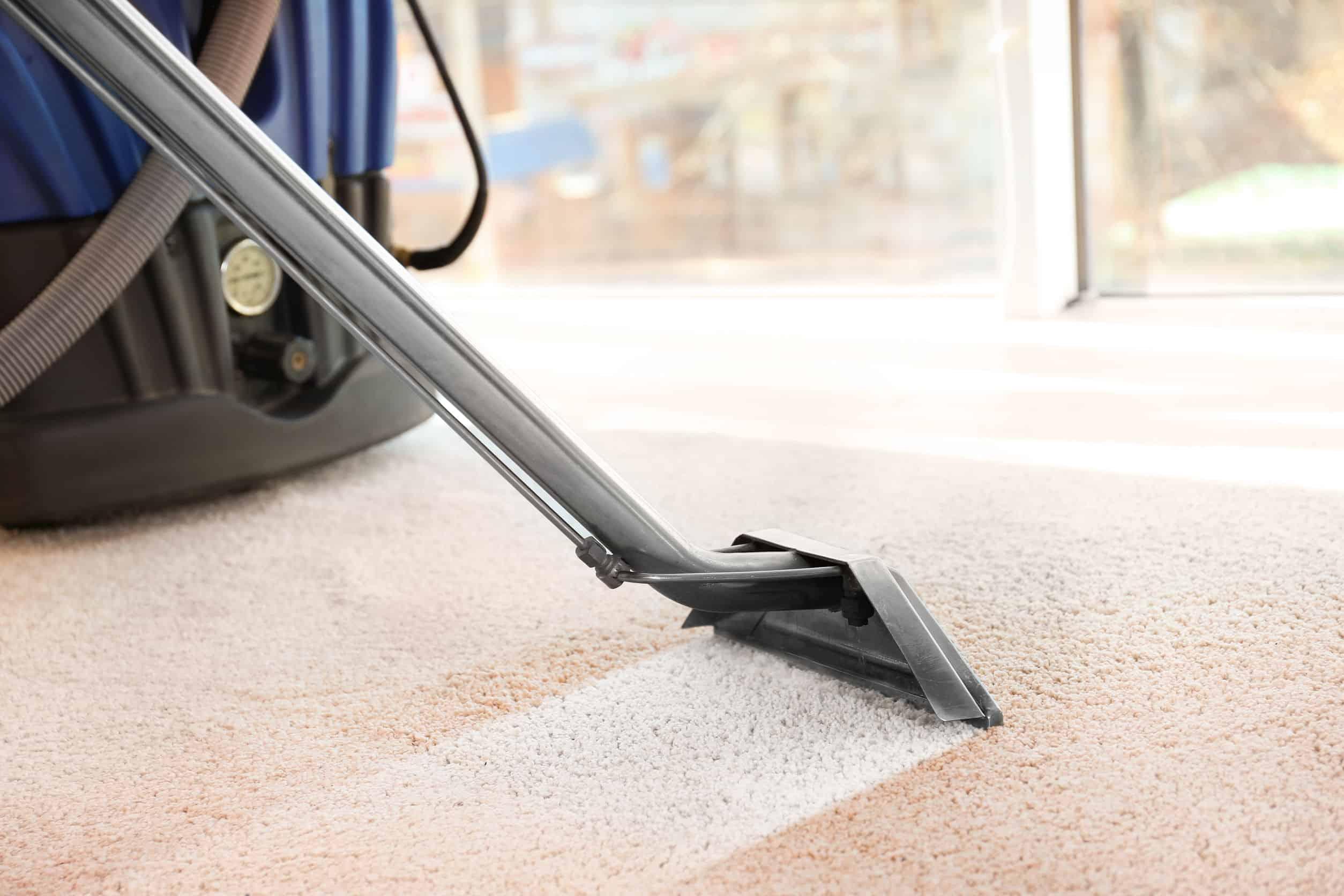 Lava alfombras: ¿Cuál es el mejor del 2020?
